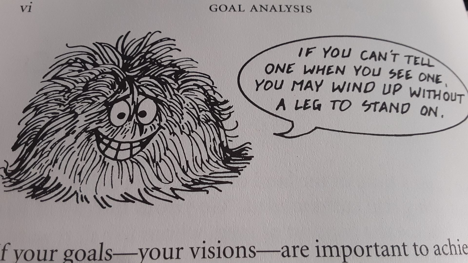 'Fuzzy' Image from the Preface of Goal Analysis by Robert F. Mager